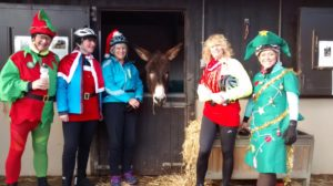 Otley visits Christmas Donkeys